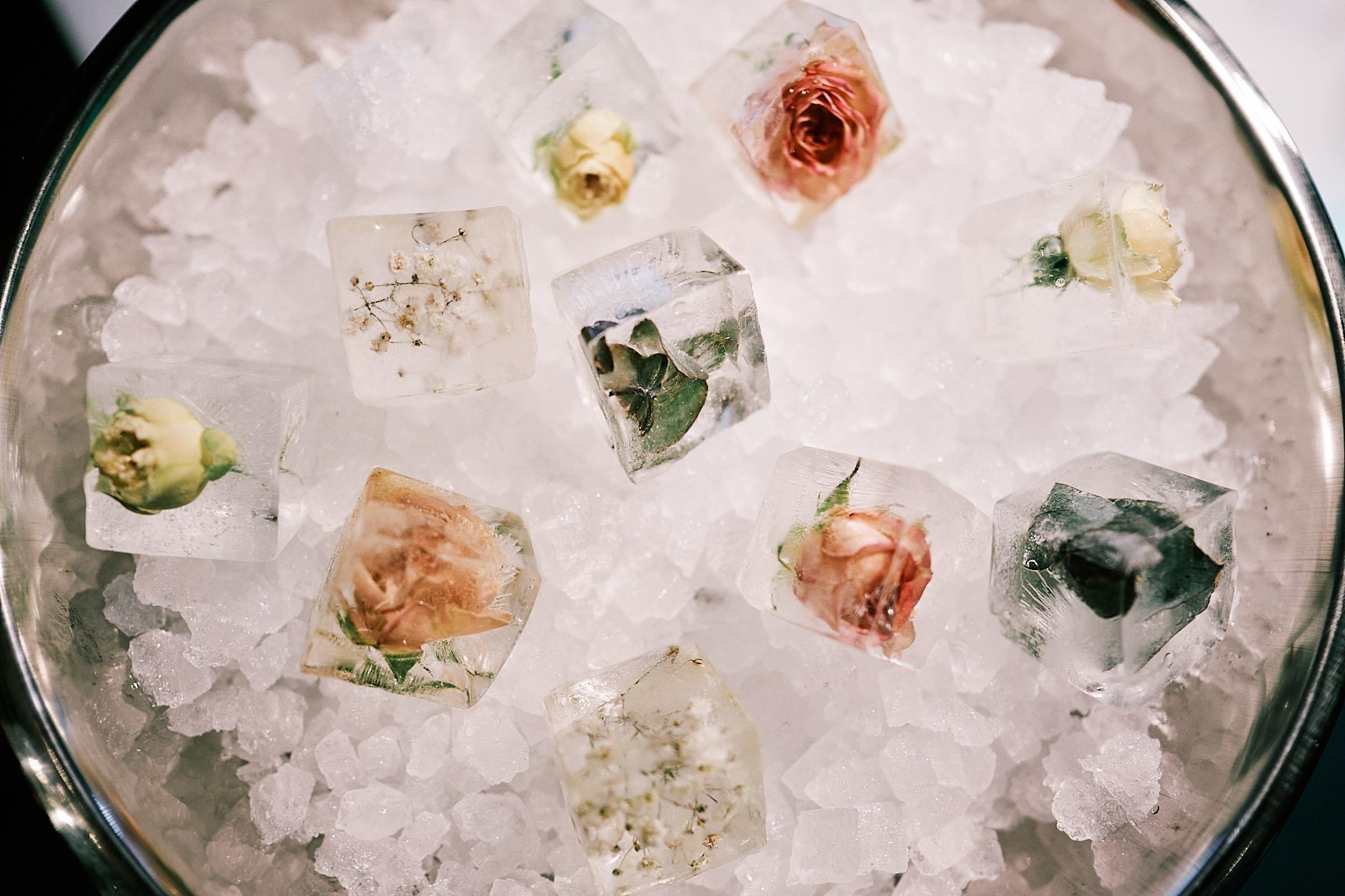 Eis | Rosen | Eiskühler | Lieferant | Barformat | Hannover | Eis | ICE | Früchten